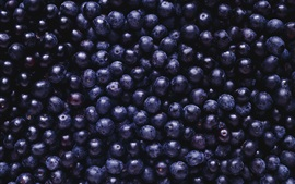 Preview wallpaper Many blueberries