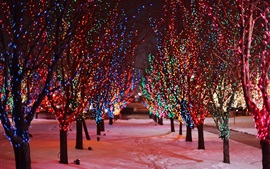 Preview wallpaper Trees, night, snow, winter, beautiful holiday lights