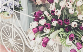 Preview wallpaper White bike, flowers, bouquet tulips