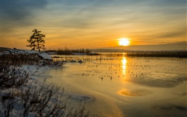 Winter, lake, snow, sunset, grass