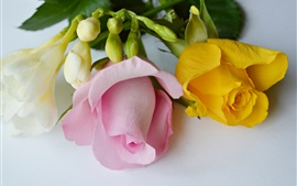 Preview wallpaper Yellow pink petals roses, bouquet