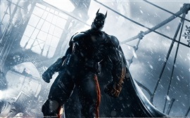 Batman: Arkham Origins, PC games