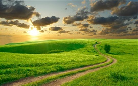 Beautiful green grass, morning, hills, road, clouds, sunrise