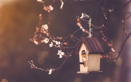 Preview wallpaper Bird house, cherry flowers