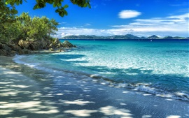 Coast, beach, sea, trees, mountains, blue sky