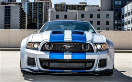 Preview wallpaper Ford Shelby Mustang car front view