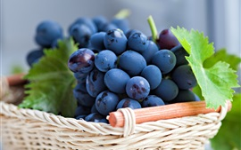 Fresh grapes bunches, basket, leaves
