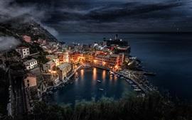 Itália, Liguria, Manarola, mar, barcos, noite, luzes, rochas, casas