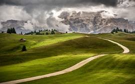 Italy, Trentino, Alto Adige, green fields, mountains, road, trees, house, clouds
