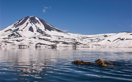 Preview wallpaper Kamchatka, mountains, snow, lake, bears swimming in water
