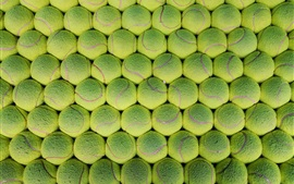 Preview wallpaper Many green tennis