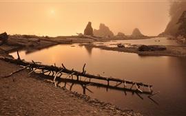 Aperçu fond d'écran Montagne, rivière, brouillard, sec, arbres, aube, lever soleil