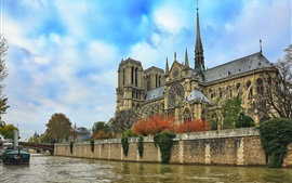Notre Dame Cathedral, river, blue sky, trees, France, Paris