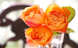Preview wallpaper Orange rose flowers, glass cup