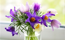 Preview wallpaper Pulsatilla flowers, vase, bouquet, purple and pink