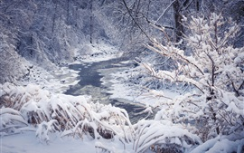 Snow winter, trees, forest, river, snowflakes