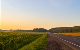 Preview wallpaper Summer dawn, road, trees, fields, fog
