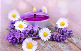 Preview wallpaper White chamomile flowers, purple lavender, candle, fire