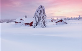 Preview wallpaper Winter morning, thick snow, house, trees, sunrise