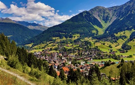 Alps, mountains, trees, forest, town, houses