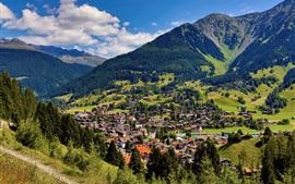 알프스, 산, 나무, 숲, 마을, 주택