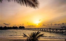 Preview wallpaper Beautiful tropical nature, palm trees, bridge, resort, huts, sea, sunset, Maldives