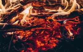 Preview wallpaper Bonfire, fire