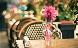 Cafe, glass cups, flowers, table, chair