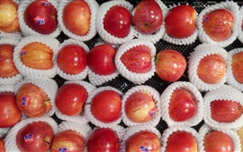 Aperçu fond d'écran Fruits délicieux, pommes
