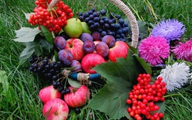Fruits, grass, grapes, apples, plums, berries, flowers