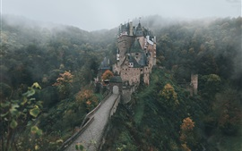 Germany, castle, autumn morning, fog, forest, trees