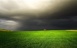 Preview wallpaper Green field, black clouds, tree