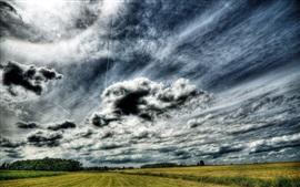 Green fields, trees, clouds, sky, dusk