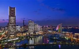 Japão, cidade, noturna, vistas, arranha-céus, luzes