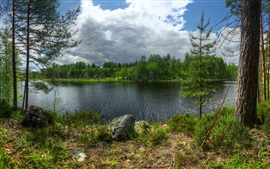 Preview wallpaper Karelia, Lake Ladoga, Kilpola island, trees, clouds, Russia