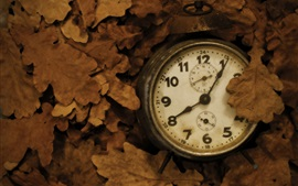 Old clock, leaves