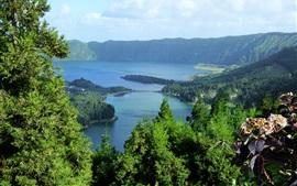壁紙のプレビュー ポルトガル、アゾレス諸島、海、木