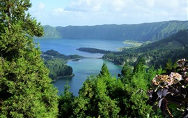 Aperçu fond d'écran Portugal, Açores, mer, arbres