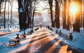 Russia, Kaluga, winter, park, snow, bench, trees, sunrise