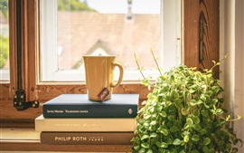 Still life, books, cup, plants, window