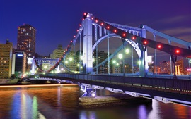 Tokyo, Japan, capital city, night, bridge, river, lights