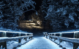 Preview wallpaper Winter park at night, snow, trees, wood stairs, lights, illumination