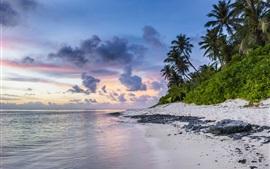Aperçu fond d'écran Plage coucher de soleil, mer, palmiers, océan, nuages