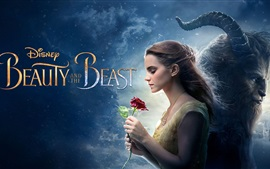 Preview wallpaper Beauty and the Beast, Disney movie