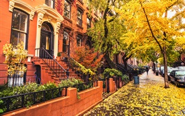 Preview wallpaper Brooklyn, city, houses, sidewalk, autumn, trees, leaves, rain, USA