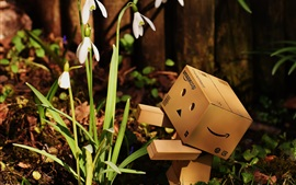 Preview wallpaper Danbo look at snowdrops