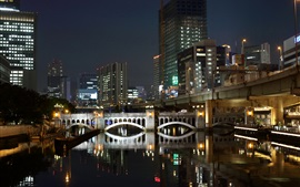 Fukuoka, Japan, night, city, skyscrapers, river, bridge, lights