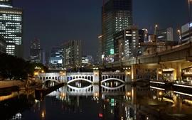 Fukuoka, Japón, noche, ciudad, rascacielos, río, puente, luces