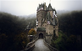 Preview wallpaper Germany, castle, road, autumn, fog, morning