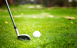 Golf, ball, grass